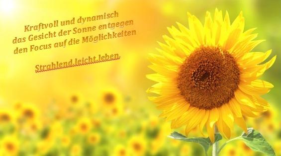 Sonnenblume-kraftvoll-dynamisch